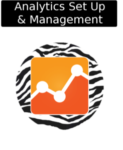 cloudy zebra google analytics management and setup icon