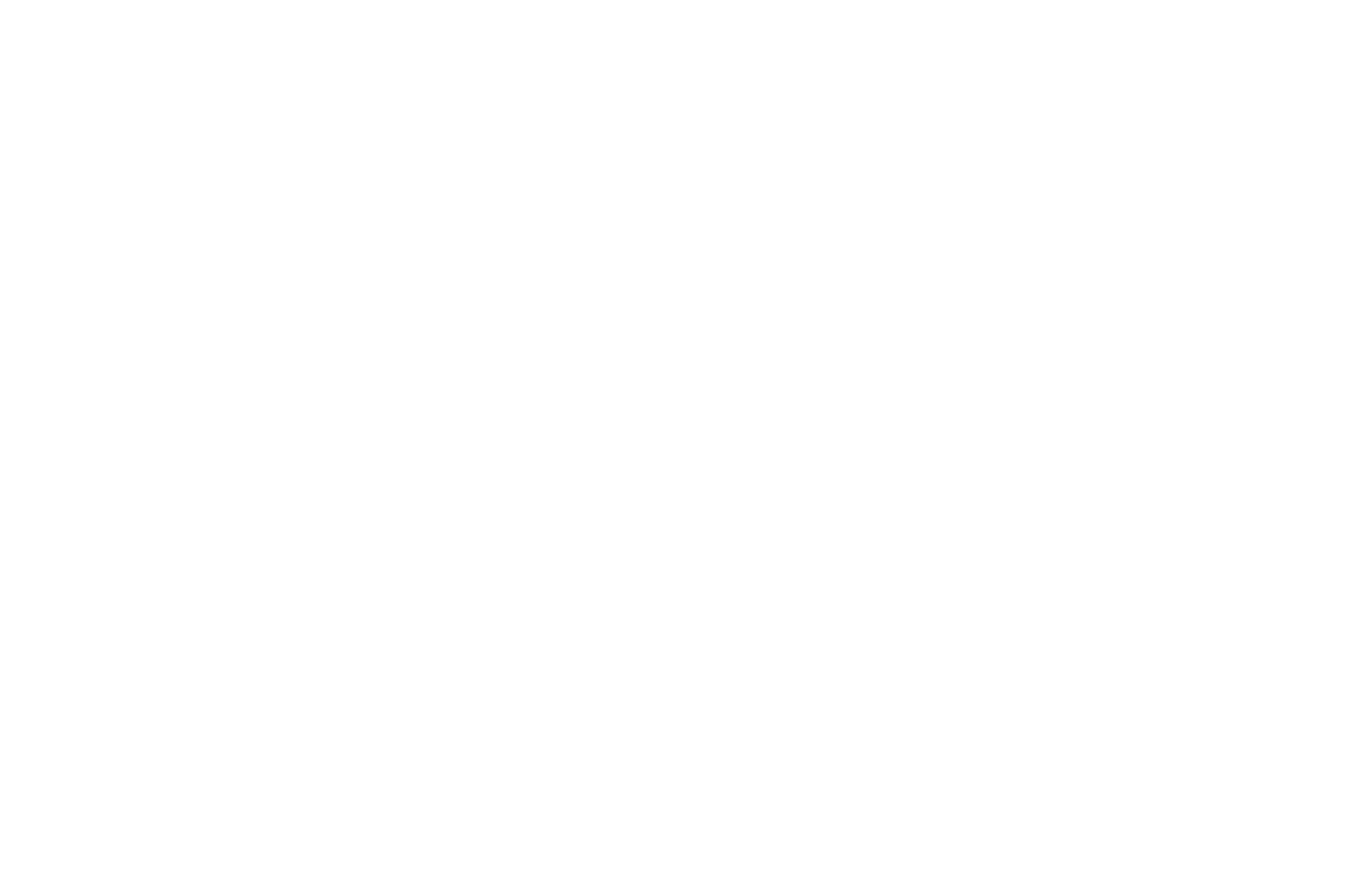 white logo for cloudy zebra seo